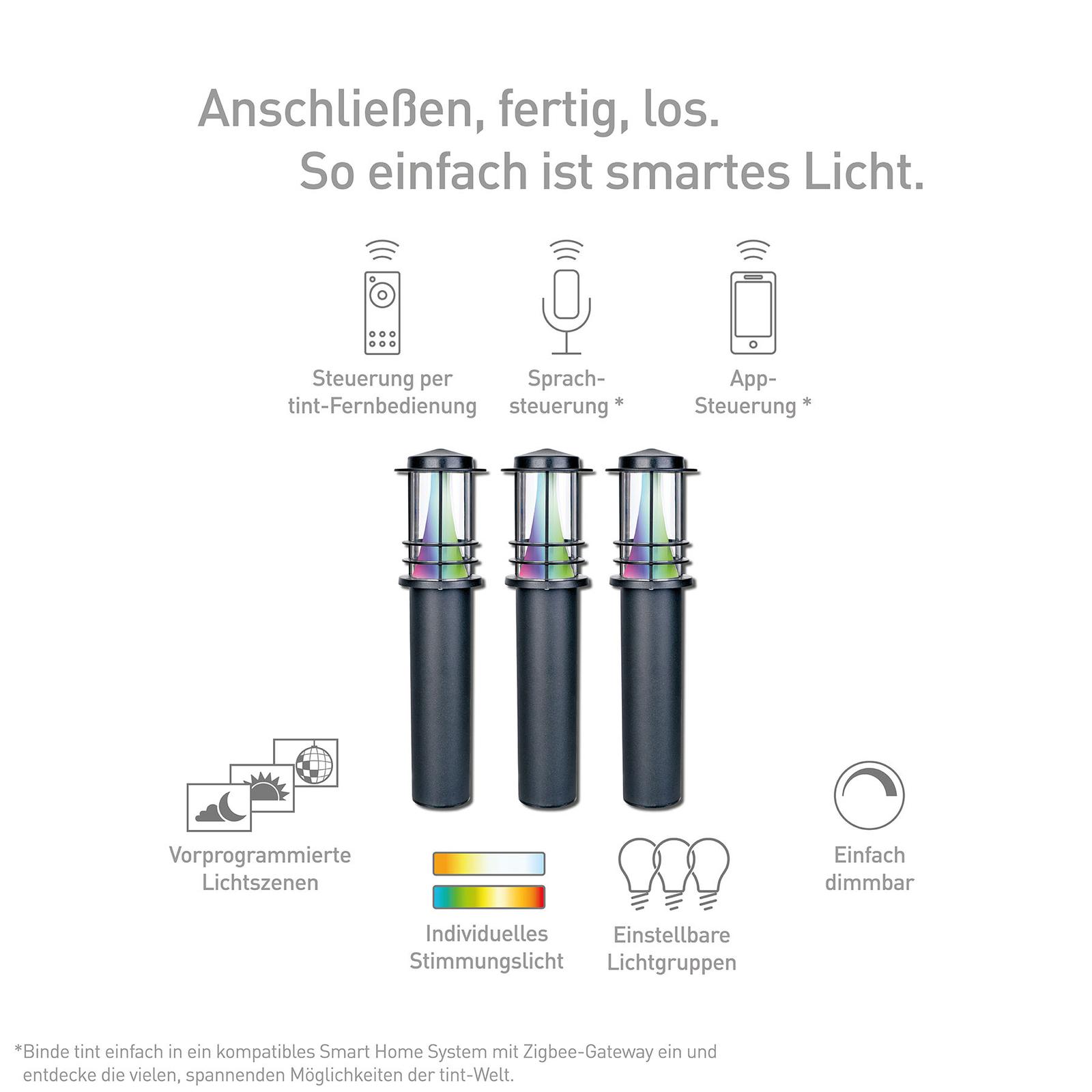 Müller Licht tint Petunia LED-Wegeleuchte 3er Set