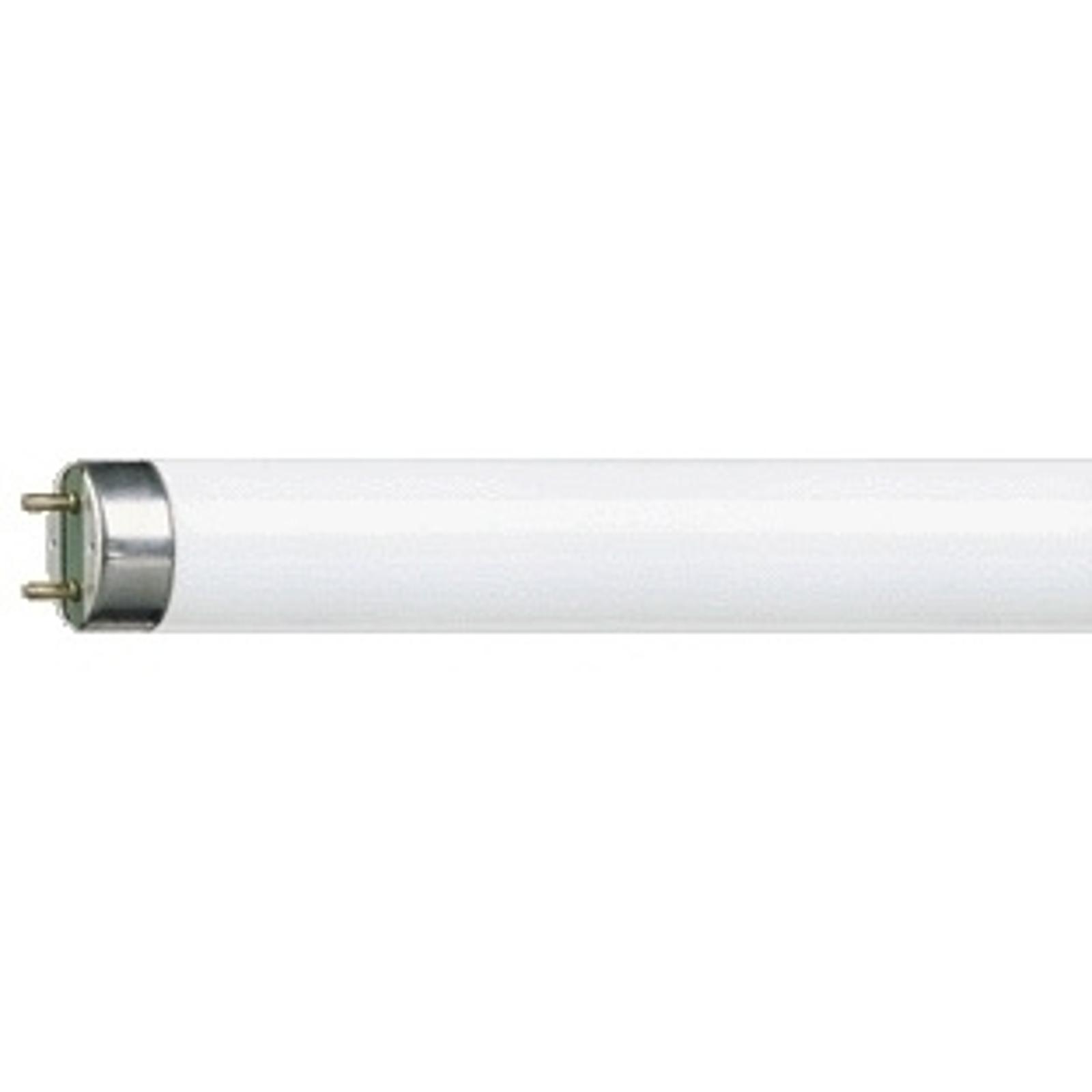 G13 T8-lyspære MASTER TL-D Super 18W/865